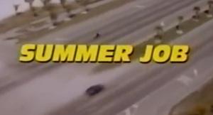 Summer Job0